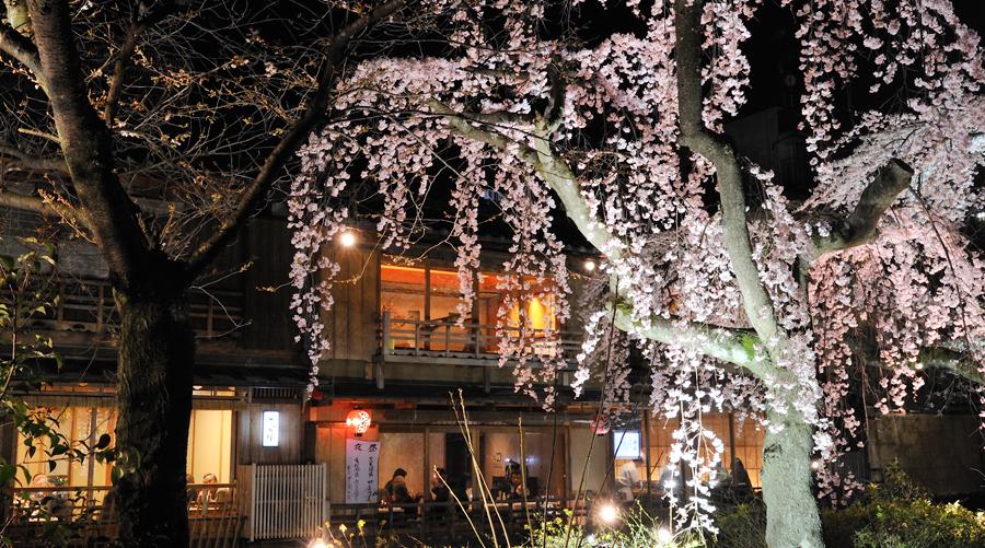 祇園 (お笑いコンビ)の画像 p1_31